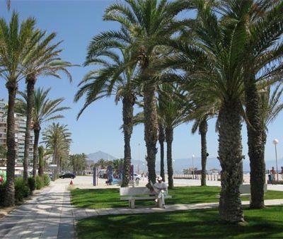 Vườn cây Hòa Bình