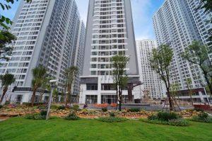 dự-án-cây-xanh4-300x199 Trồng cây xanh chung cư TIME CITY