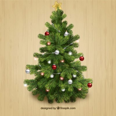 Cây Thông Noel – Cây trang trí trong nhà