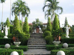 Địa chỉ cung cấp cây xanh công trình uy tín và chất lượng