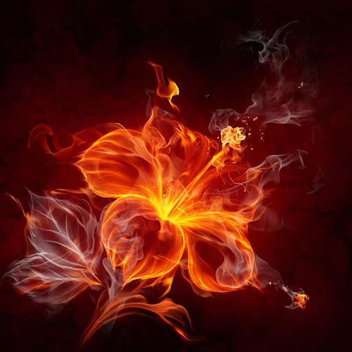 Người mệnh Hỏa thường có tính cách nóng nảy