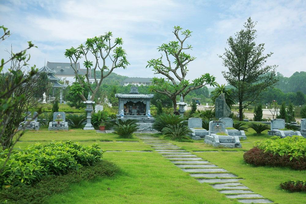 Lưu ý khi trồng cây phong thủy ở mộ